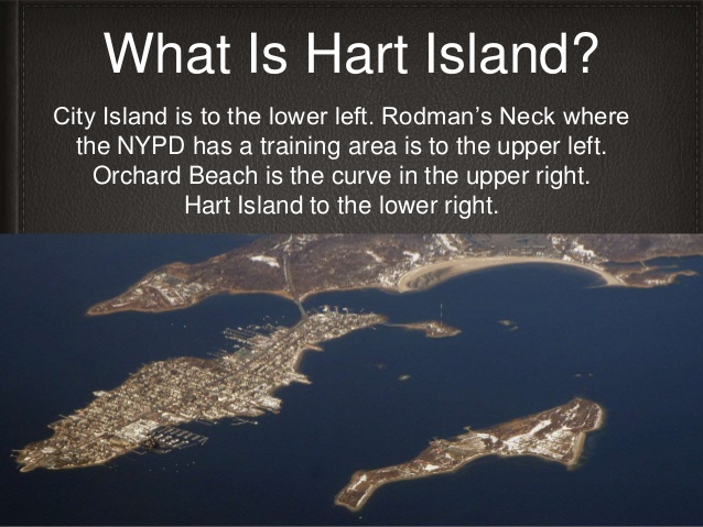 What Is Hart Island?